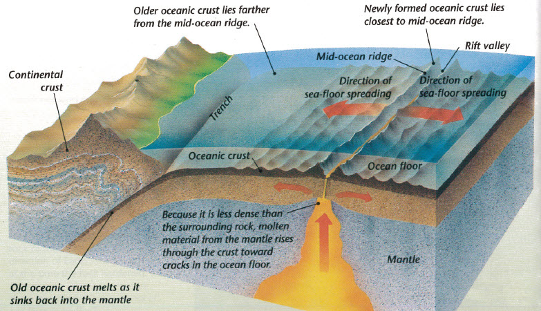 RC 3 Part 3 (Unit 8: Plate Tectonics) Feb. 14- March 2 - Mrs ...